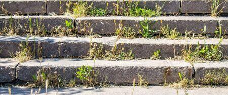 Photo pour Overgrown old granite steps close-up - image libre de droit