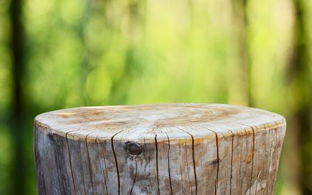 Foto de Empty tree trunk for display montags - Imagen libre de derechos