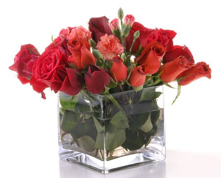 Flowers in a glass square vase over white background.