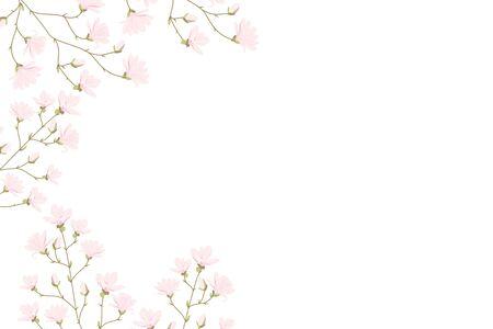 Illustration pour Vector magnolia flowers background illustration - image libre de droit