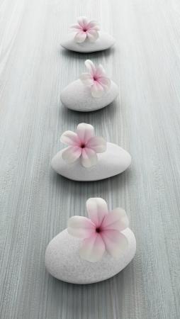 frangipani flower on white stone, zen spa on white wood
