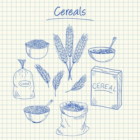 Illustration of cereals ink doodles on squared paper