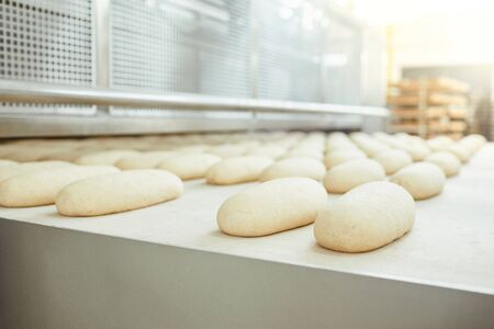 Photo for Raw bread is making on the automatic equipment line in the bakery manufacture . - Royalty Free Image