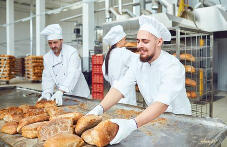 Photo pour Bakers working together at baking manufacture. - image libre de droit