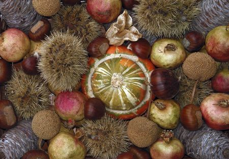 Autumn still life - colors and fruits of Fall season