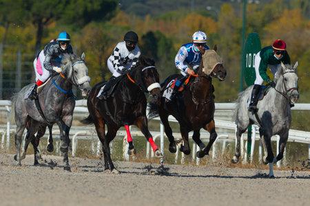 Photo pour horse racing at the zarzuela racecourse in madrid - image libre de droit