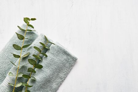 Photo pour Rolled fluffy towel and green eucalyptus branch on white background. Minimalist scandinavian style. Hygiene, wellness well-being, body care concept. Copy space for text, top view - image libre de droit