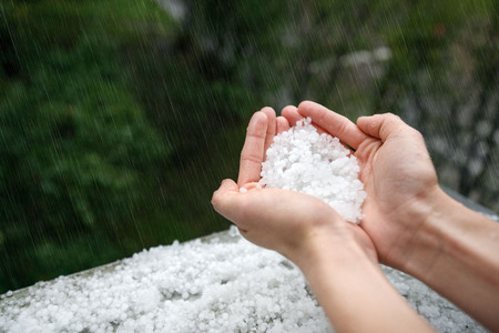 Photo pour Holding freezing granulated hail ice crystals, grains in hands after strong hailstorm in autumn, fall. First snow in early winter. Cold weather. - image libre de droit