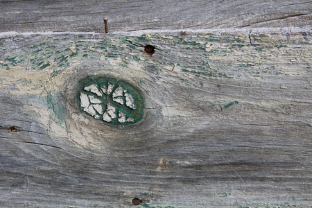 Close up of wood knot on an old piece of wooden siding.  What little paint is left is peeling and chipping.