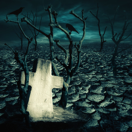 Abandoned grave at haunted mysterious desert with black ravens seating on dead trees under dramatic night sky. Dark spooky landscape for evil and death concept
