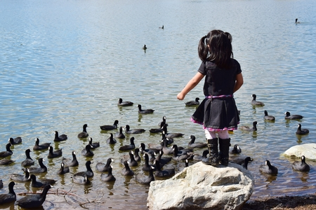 Toddler girl feeds the ducks in the lake standing on a boulder