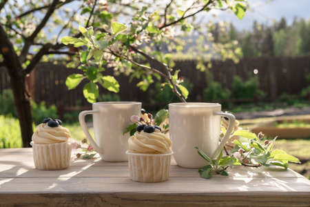 Photo pour Two beautiful porcelain coffee cups with homemade blueberry cupcakes with vanilla cream on wooden table in spring garden. Apple tree branches in bloom in setting sun light. - image libre de droit