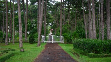 Walking road with the steel gate at pine forest in Dalat, Vietnam.