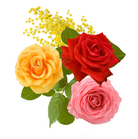 Photo for Beautiful roses bunch isolated on white background - Royalty Free Image