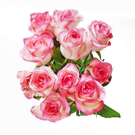 Photo for Beautiful pink roses bunch on white background, closeup - Royalty Free Image