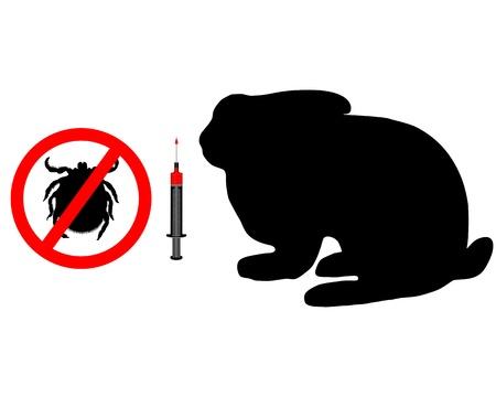 Immunization for bunnies