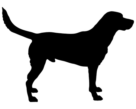 Illustration for Labrador silhouette - Royalty Free Image
