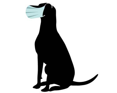 Photo pour Dog with protective mask on white - image libre de droit