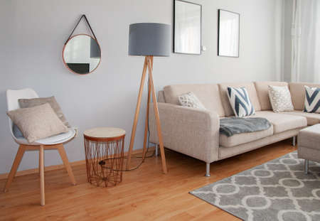 Photo pour Scandinavian Minimalism Design. Beautiful Living room Decorated in the Grey and Beige Colors. Comfortable, Cozy Interior Design. Modern Home in Neutral Colors. - image libre de droit