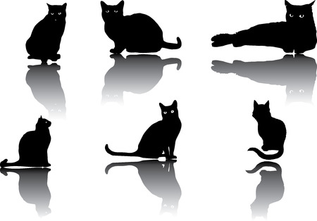 Set of different cats silhouettes for design use