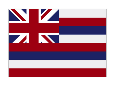 Illustration for USA state flag of Hawaii - Royalty Free Image