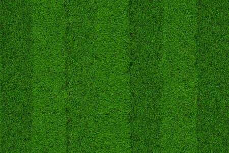 Foto per Green grass soccer field background - Immagine Royalty Free