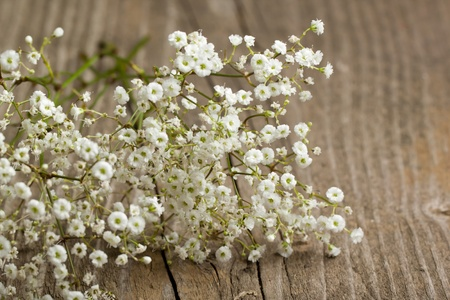 bunch of Gypsophila (Baby's-breath flowers) on old wooden table