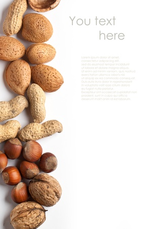 Background with assorted nuts almond, hazelnut, walnut and peanut over white with sample text