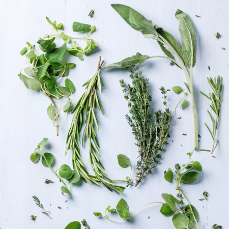 Assortment of fresh herbs thyme, rosemary, sage and oregano over light blue wooden background. Top view. Square image