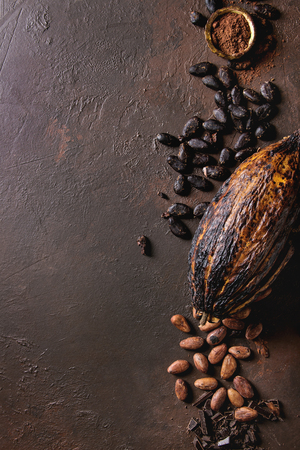 Photo pour Variety of fresh and dry cocoa beans and cocoa pod with chopped dark chocolate and cocoa powder over brown texture background. Flat lay, space - image libre de droit