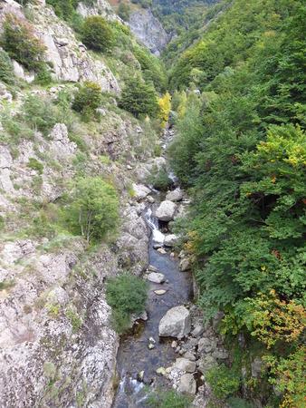 Ruisseau dans la nature - Creek in nature