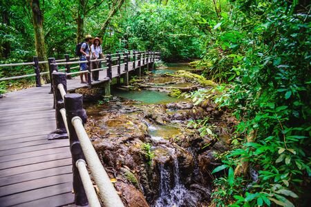 Asian Lover happy travel the mangrove forest. She is walking on a wooden bridge. Nature trail, Thanbok waterfall, recreation, travel, backpacks, nature, tourism, countryside, style, forest, adventure.