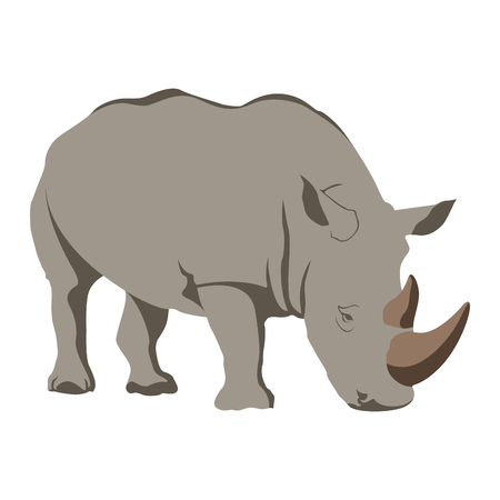 Isolated rhino on a white background, Vector illustration