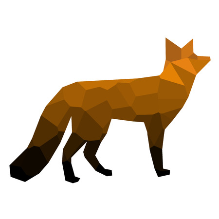 Isolated colored low poly fox, Vector illustration