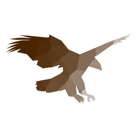 Isolated colored low poly eagle, Vector illustration