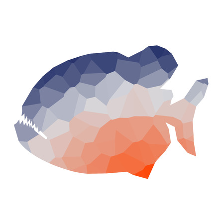 Isolated colored low poly piranha, Vector illustration