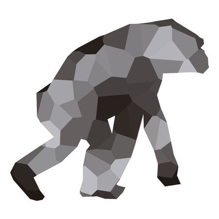 Isolated colored low poly chimpanzee, Vector illustration