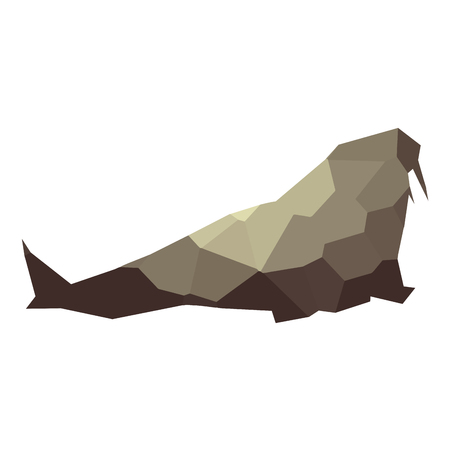 Isolated colored low poly sea lion, Vector illustration