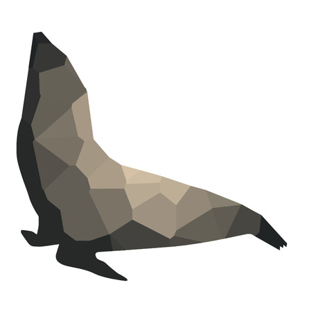 Isolated colored low poly seal, Vector illustration