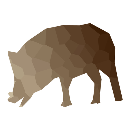 Isolated colored low poly wild pig, Vector illustration