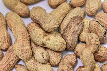 peanuts in shells,Groundnuts
