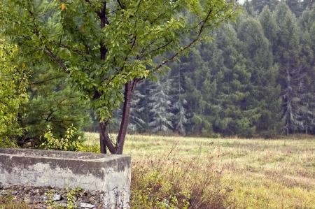 Polish landscapes - Roztocze Hills - Dahany