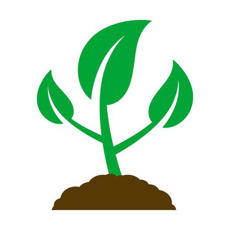 Illustration pour Icon of a young plant. Vector Illustration. - image libre de droit