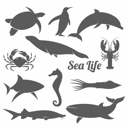 black and white vector illustration set of silhouettes of sea animals in the minimal style