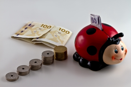 A piggy bank shaped as a ladybird with Danish currency around. isolated on light background