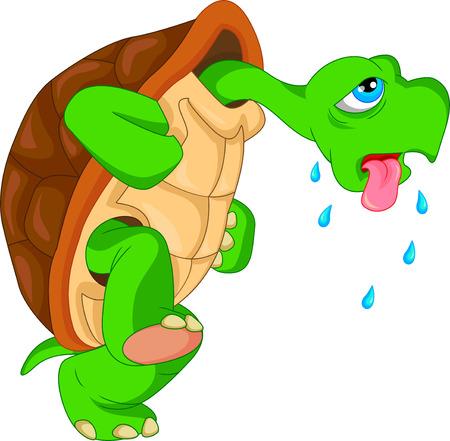 Illustration pour cute green turtle cartoon - image libre de droit