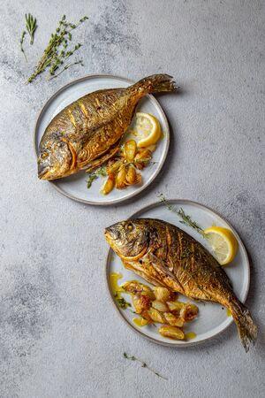 Photo pour Grilled sea bream or dorada on gray plate. Gray background - image libre de droit
