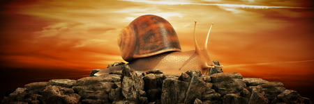 Foto per snail at sunset. 3d render - Immagine Royalty Free