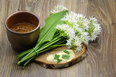 fresh ramson wild garlic leaves and butter bread on table. pot with mustard spice aside.