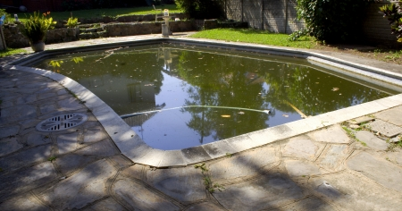 A home swimming pool that has turned dark green from neglect